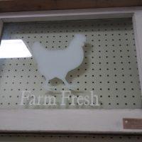 Chicken In Frame